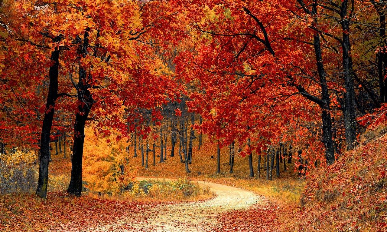 Jó hangulatban ősszel is